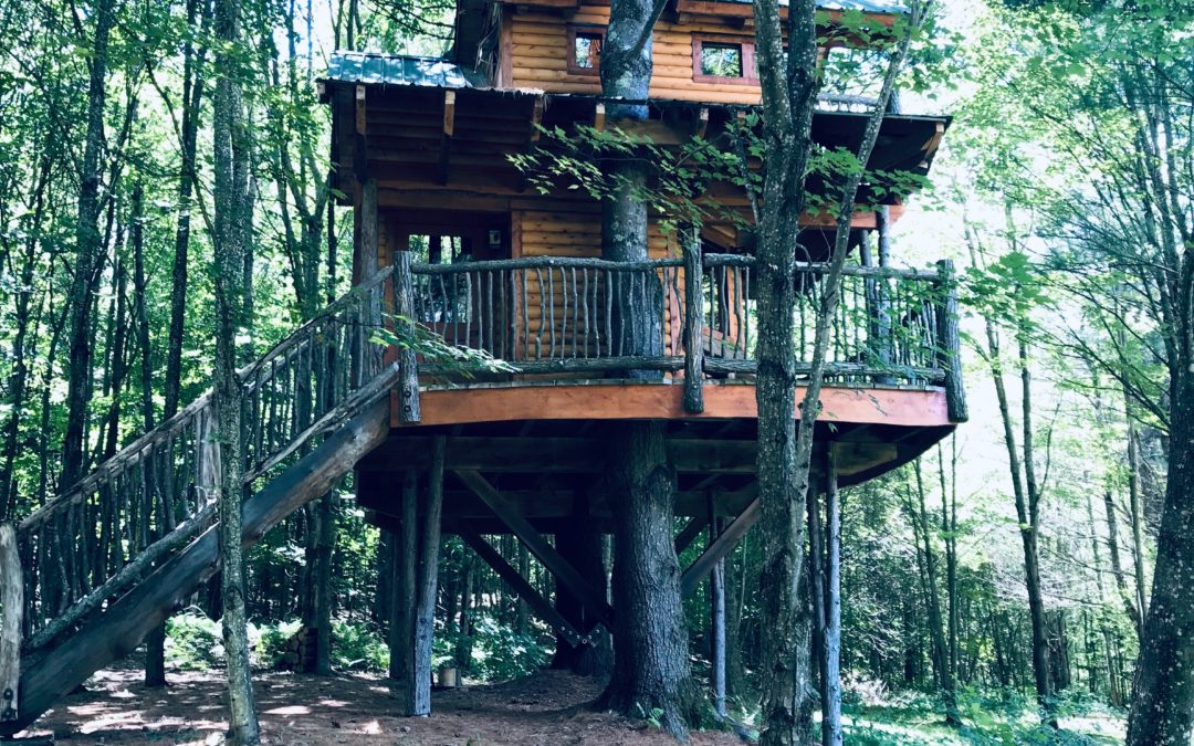 Moose Meadow Lodge & Treehouse – Vermont, U.S.A.